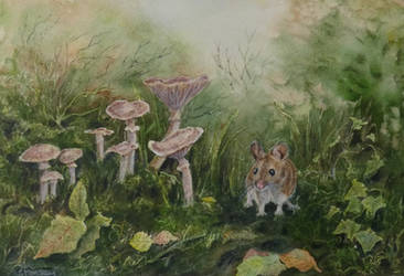 The Foraging Mouse. by SueMArt