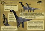Ludwig's Dino Files: Camarasaurus lentus
