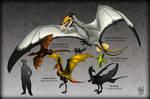 Ornithotarsia : Wyverns of The World