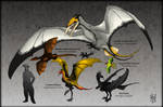 Ornithotarsia : Wyverns of The World