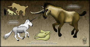 Unicorns : The One-Horned Beasts by TheJuras