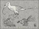 Spec Evo Challenge #6 - Bird Noodle