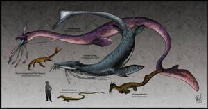Thalassolania : Sea Serpents of The World