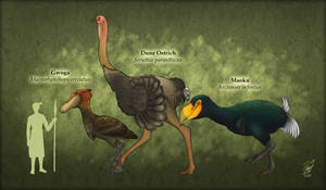 Giants of The Feathers