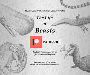 Patreon Exclusive Series: The Life of Beasts