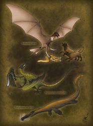 Dracomorpha: Rise and Triumph