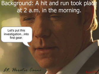 Horatio Caine One-Liner 7