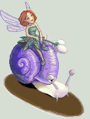 Cylli's Snail