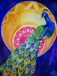Patterned Peacock