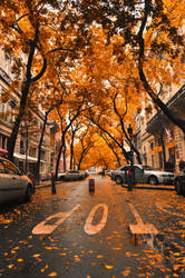 Autumn Vertigo by DarkJade21