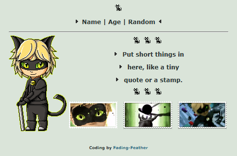 (Non-Core) Chat Noir Custombox by Fading-Feather