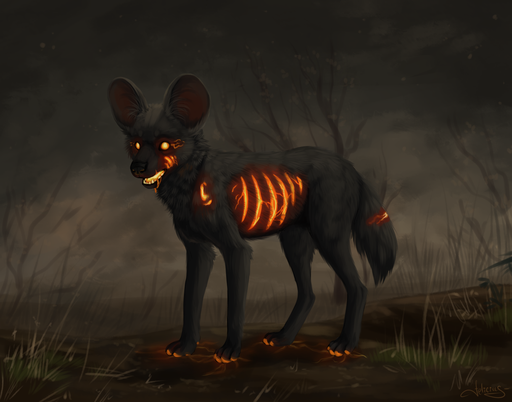 A fire african wild dog by felix monster