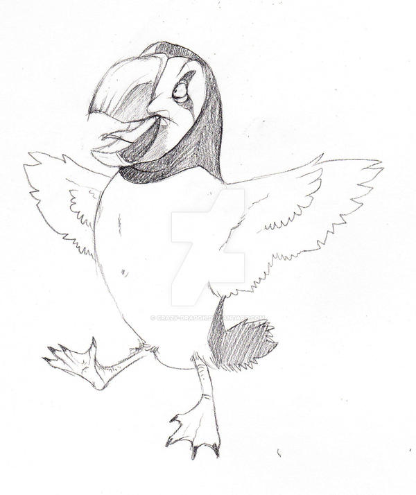 Puffin by Crazy-Dragon