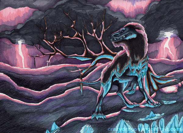 Elder - 9k by Crazy-Dragon