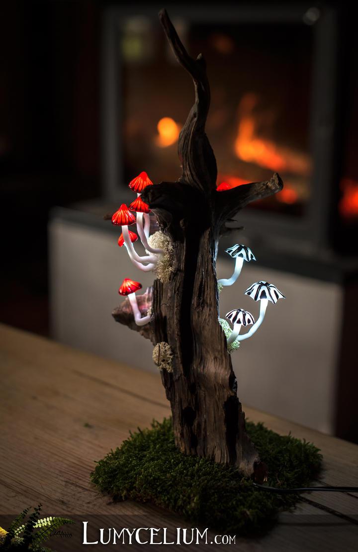 Mordor by lumycelium