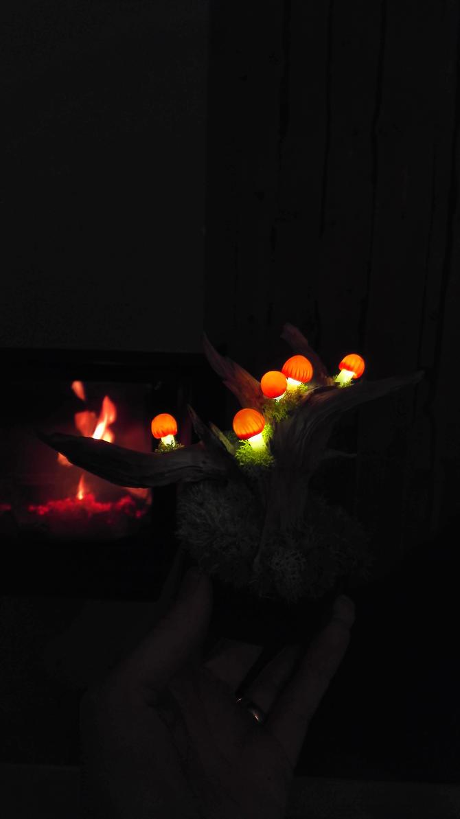 Mushrooms lamp   by lumycelium
