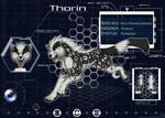 Thorin Sheet 2008