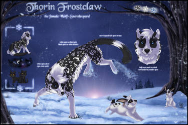 Thorin Frostclaw - Sheet 2017 by ThorinFrostclaw