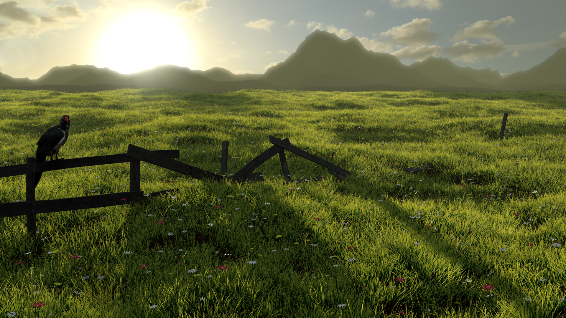 Grassy Field By Jarwal On DeviantArt