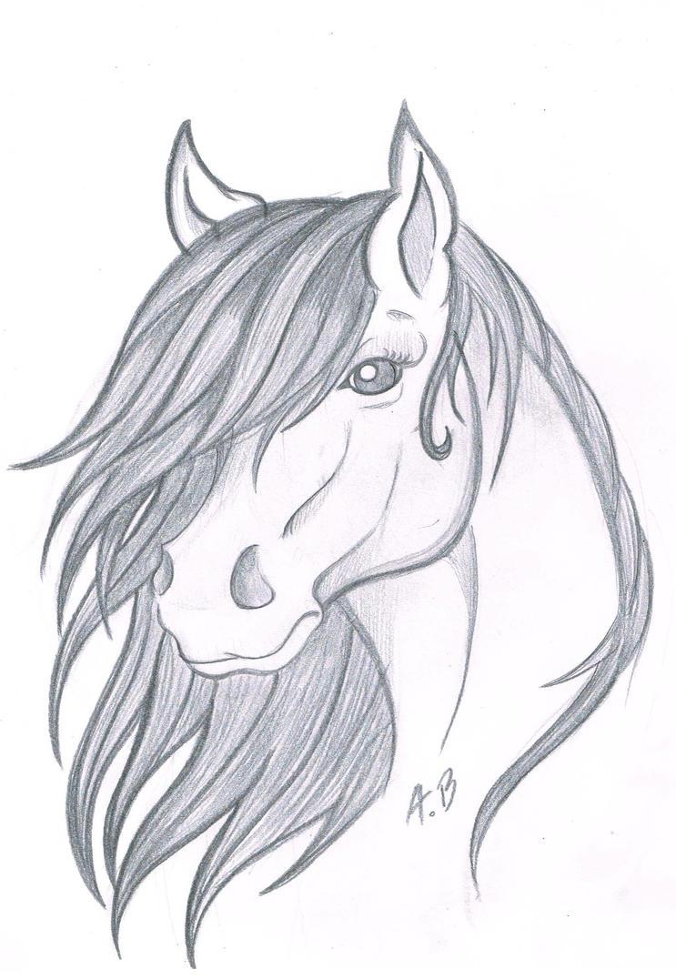 Horse sketch II by RossmaniteAnzu