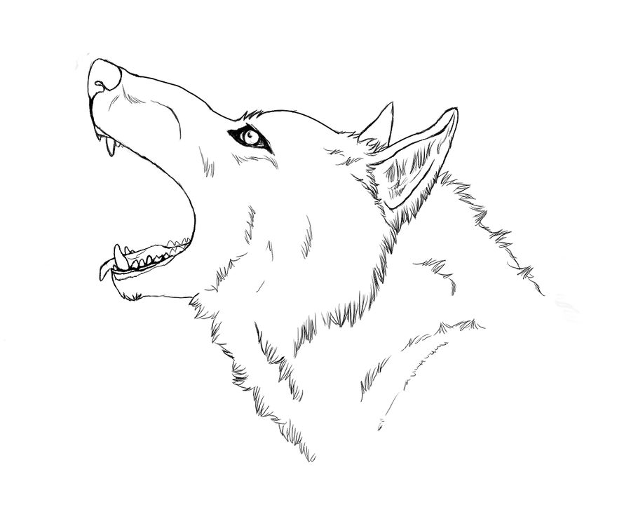 The gallery for --> Angry Wolf Face Outline