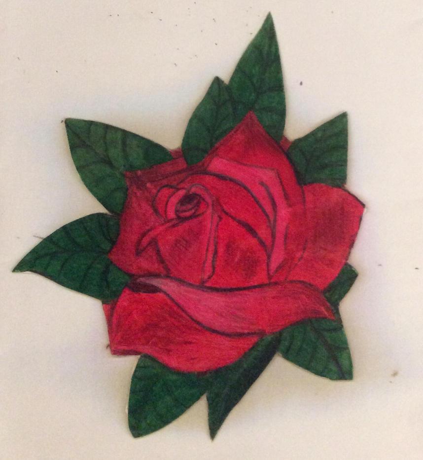 Rose by MuslimGirlAnimelover