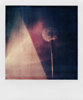 Reversible Horizon by mheuf