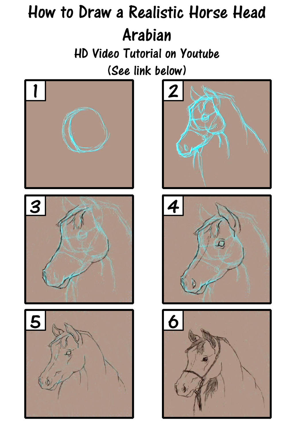 How To Draw A Horse Head How to Draw a R...