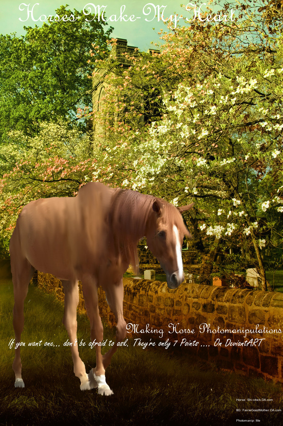 Horses-Make-My-Heart's Profile Picture