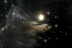 Moonlit Wait by Caedy