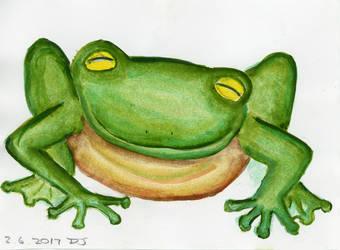 Froggie Yarka by CorazondeDios