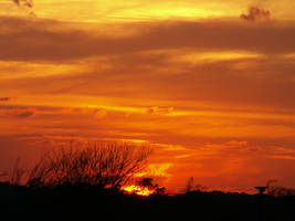 torched sky by CorazondeDios