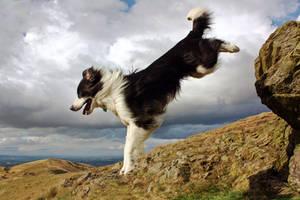 Leap Of Faith by micromeg