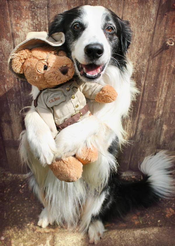 Bear Hug by micromeg