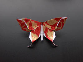 Origami butterfly by Taulmari