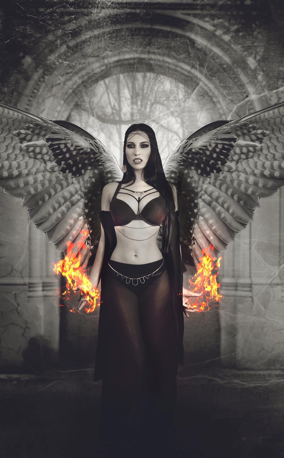 wings of fire wallpaper
