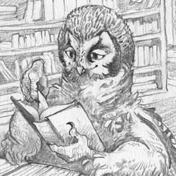 Library coma graphite by WintersRead