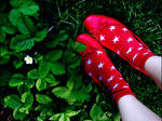 red shoes in green grass by freelans