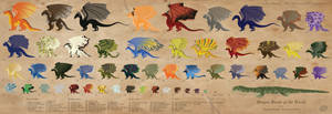 Dragon Reference Sheet