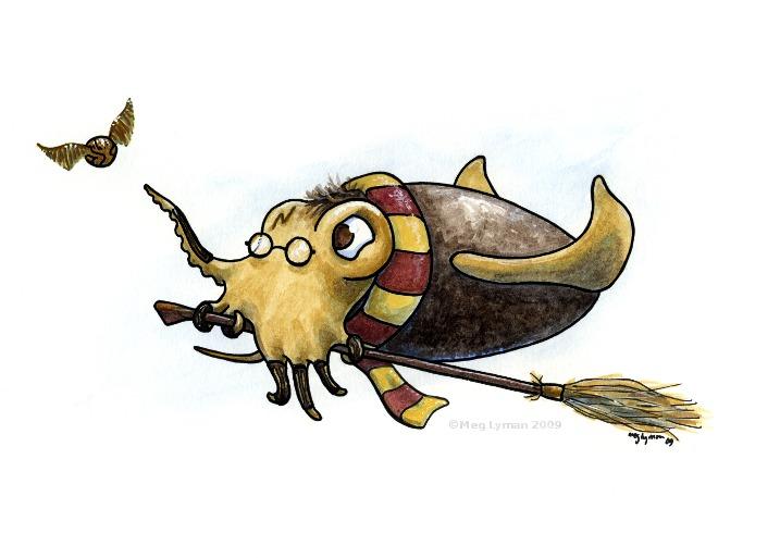 Squidditch