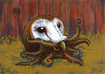 Barn Owl Octopus by MegLyman