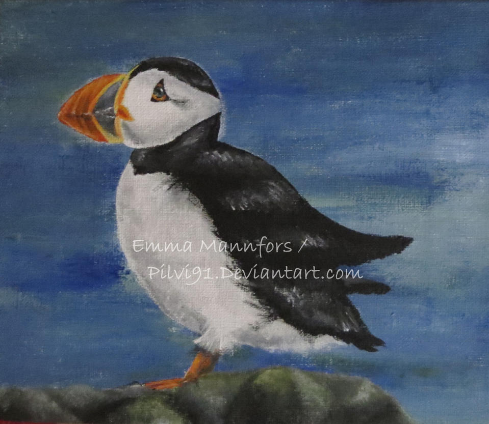 Puffin by Pilvi91