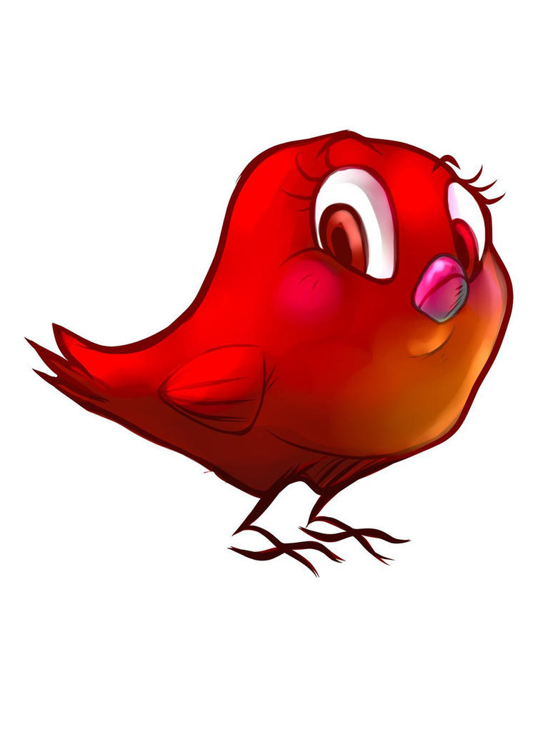 Bird /color test by kitvinicius