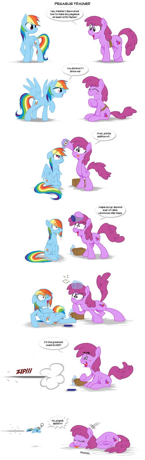 Pegasus trainer by Epulson
