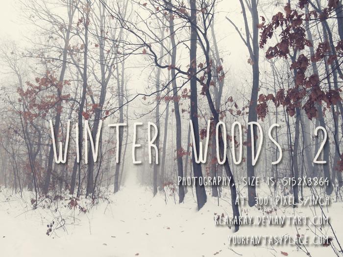 Winter Woods 2 by KlaraKay