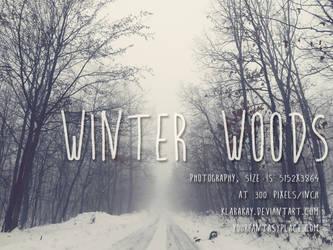 Winter Woods 1