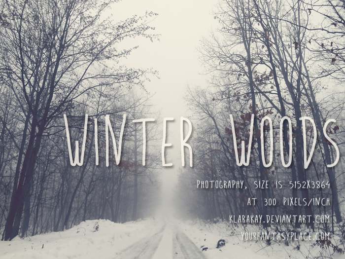 Winter Woods 1 by KlaraKay