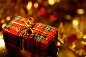 Christmas present by MarieMagenta