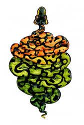 python by elCounto