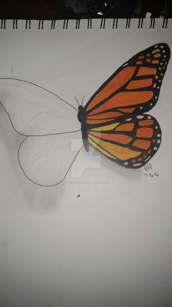 Fantasy Butterfly by Lunalover98